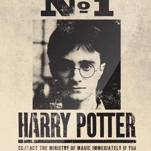 harry-potter-tin-sign