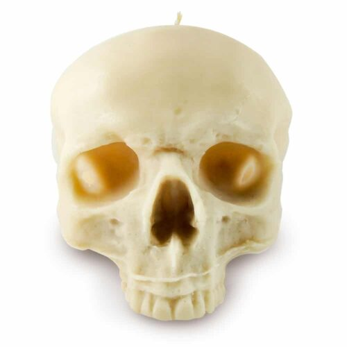 life-size-scented-wax-skull-candle-in-cream